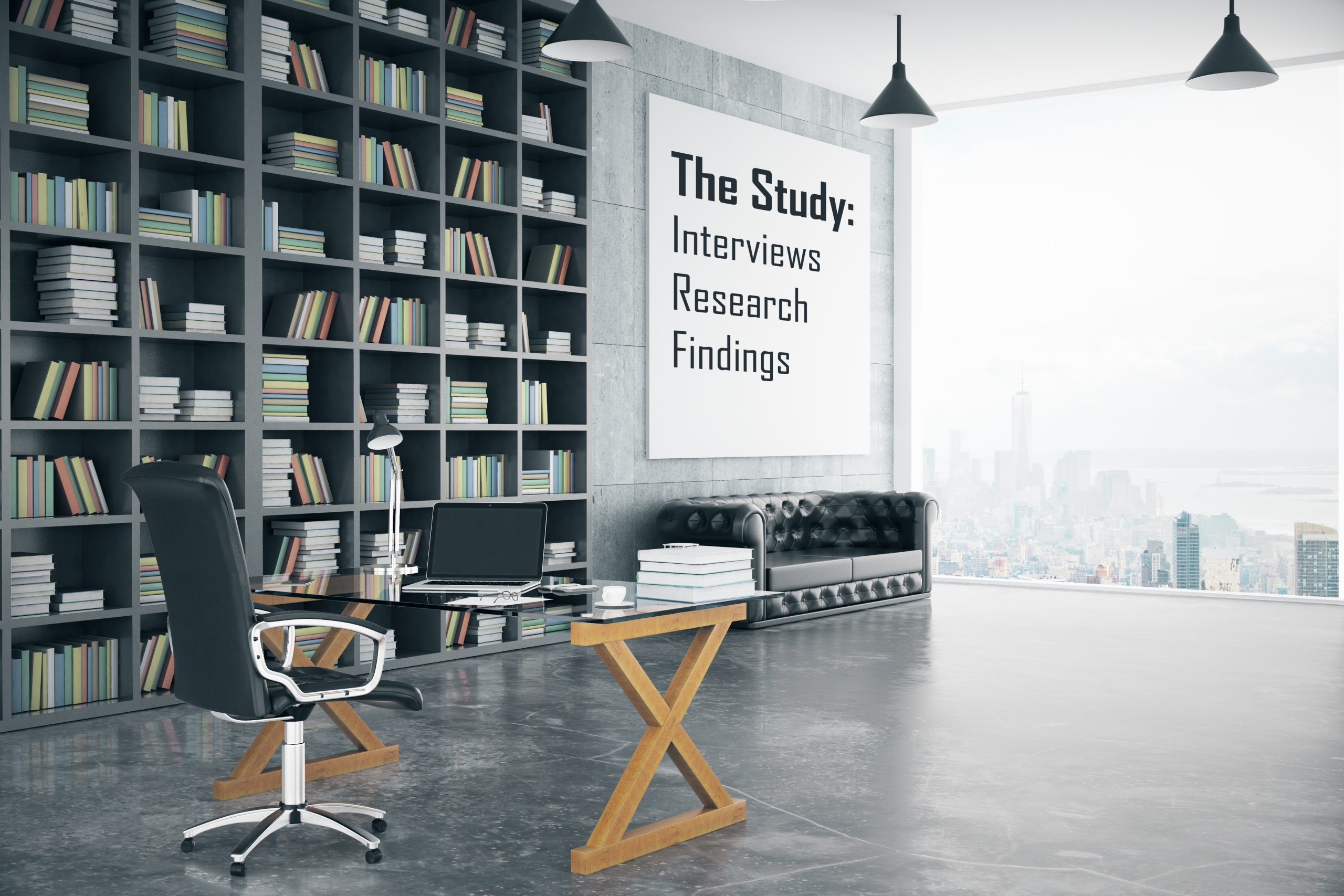 Study  Research Interviews Findings